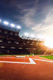 Professional baseball grand arena in sunlight stock photo