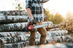 Professional bearded lumberman wearing plaid shirt hold chainsaw in hand on background of sawmill. And warehouse of trees royalty free stock photo