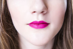 Professional beauty lips makeup. Make up closeup. Plump sexy lips and perfect skin Royalty Free Stock Photography