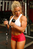 Professional Bodybuilder Girl Stock Images