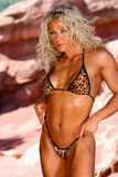 Professional Bodybuilder Girl Royalty Free Stock Images