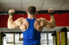 Professional bodybuilder with ideal muscular body doing pull-ups in the gym Stock Photos