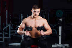 Professional bodybuilder sitting on the bench, resting between exercises with dumbbells at gym. Big Stock Image