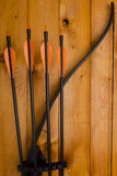 Professional bow with a set of arrows Stock Image