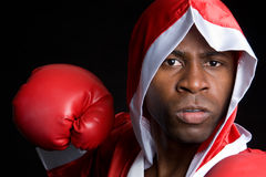 Professional Boxer Royalty Free Stock Photography