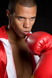 Professional Boxer Royalty Free Stock Photo