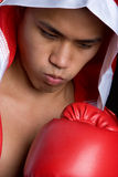 Professional Boxer Royalty Free Stock Image