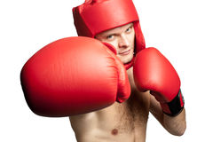 Professional boxer attacking isolated on white Stock Image