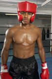 Professional Boxer At Gym Stock Image