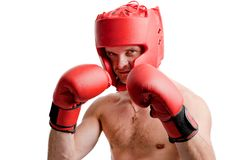 Professional boxer isolated on white Stock Photo