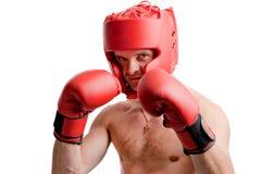 Professional boxer isolated on white Stock Photo