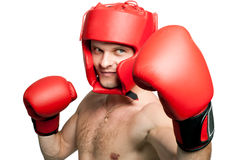 Professional boxer punching isolated on white Royalty Free Stock Images
