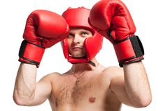 Professional boxer stance isolated on white Stock Image