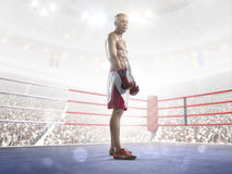 Professional boxer is training on the grand arena Royalty Free Stock Photography