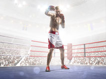 Professional boxer is training on the grand arena Stock Photos