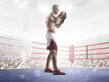 Professional boxer is training on the grand arena Stock Photo