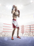 Professional boxer is training on the grand arena Royalty Free Stock Photos