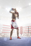 Professional boxer is training on the grand arena Stock Photography