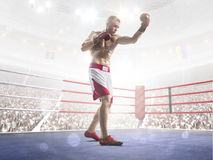 Professional boxer is training on the grand arena Stock Images