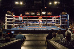 Professional Boxers In Matchup Royalty Free Stock Image