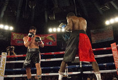 Professional Boxers In Matchup Stock Photos