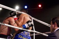 Professional Boxing Against The Ropes Royalty Free Stock Photo