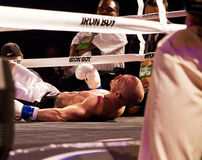 Professional Boxing Knock Down Royalty Free Stock Photo