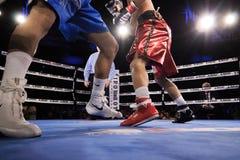 Professional Boxing in Phoenix, Arizona. Stock Image