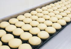 Professional breadmaking. Making bread in Food industry stock images