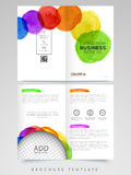 Professional Brochure, Template or Flyer design. Royalty Free Stock Photos