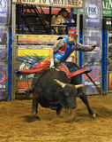 Professional Bull Riding Competition Stock Photos