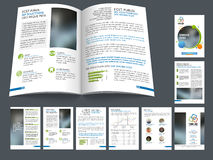Professional business brochure, template or flyer. Royalty Free Stock Photos