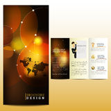 Professional business broschure. Layout design Stock Image