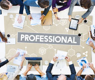 Professional Business Career Executive Boss Concept Stock Photography