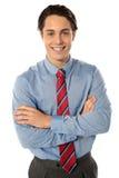 Professional business executive, portrait Stock Photography