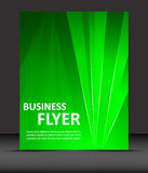 Professional business flyer template or corporate banner Royalty Free Stock Image
