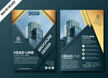 Professional Business flyer template vector illustration. Professional Business brochure background template royalty free illustration