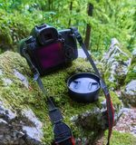Professional camera in the forest. Professional DSLR camera on mossy boulders in a forest Stock Photo