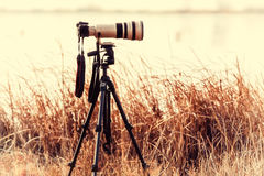 Professional camera with telephoto lens on a tripod Royalty Free Stock Photography