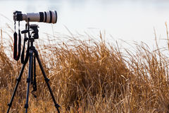 Professional camera with telephoto lens on a tripod Stock Images