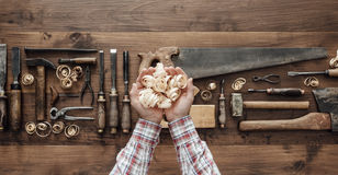 Carpenter holding wood shavings royalty free stock image