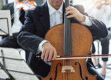 Professional cello player Stock Image