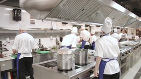 Professional chef in a commercial kitchen stock video footage