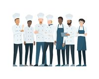 Professional chefs standing together. Team of professional chefs standing together on white background, professional occupation concept Royalty Free Stock Photo