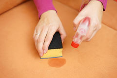 Professional cleaner is cleaning stain on sofa with spray bottle Royalty Free Stock Photography