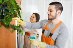 Professional cleaners cleaning Royalty Free Stock Image