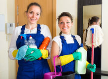 Professional cleaners with cleansers Stock Photography