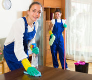 Professional cleaners make cleaning Stock Images