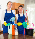 Professional cleaners at work Stock Photography