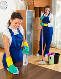 Professional cleaners at work Stock Image